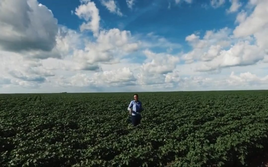 Nuvem Tecnologia Makes Big Data Possible for Rural Farmers Everywhere